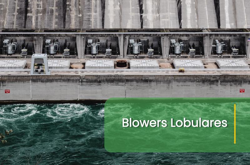 Blowers-Lobulares